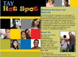 Brochure | Stars Behavioral Health Group: Tay Hot Spot