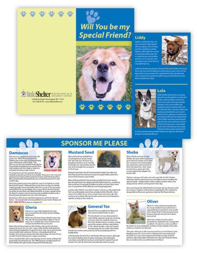 Brochure | Little Shelter Sponsor